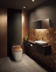 Panasonicのトイレ【アラウ-ノ】【広島市 安佐南区 安佐北区】